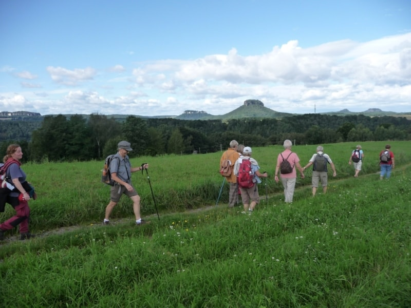 Our walking tours can also be booked as group tour packages